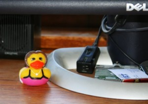 rubber ducky in our office